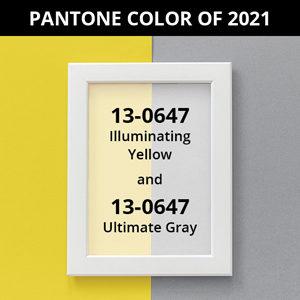Pantone Color of 2021